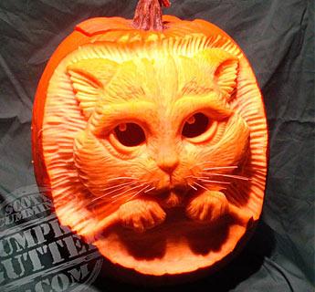 3d pumpkin carving cats_03 - Best Pumpkin Carvings